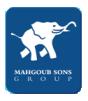 Mahgoub Sons